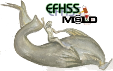 Annual EFHSS and MSÜD Conference 2004...